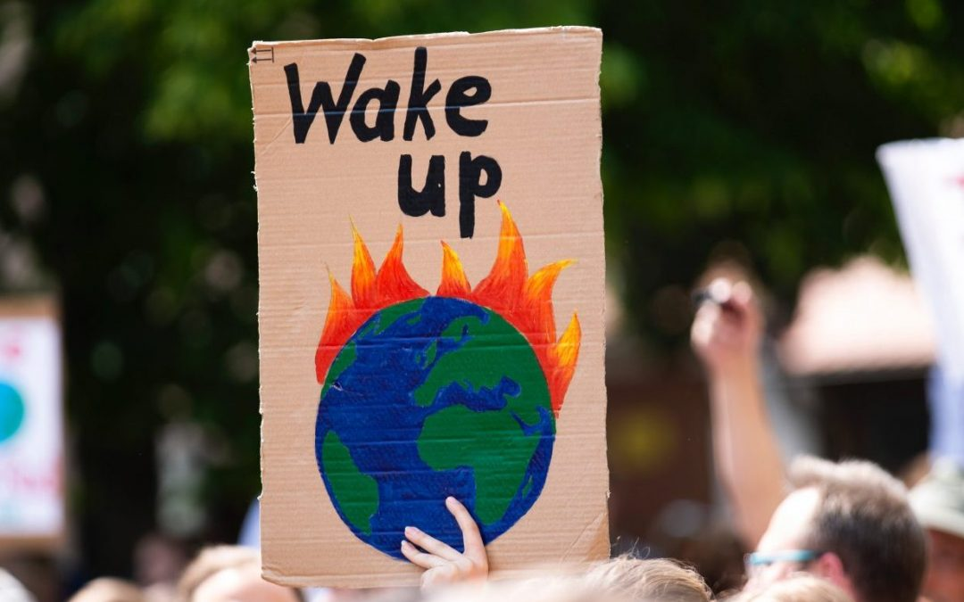 Who cares about the climate emergency?